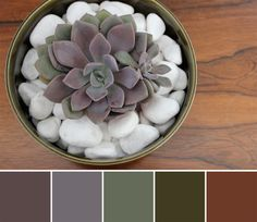 Also liking this palette for the exterior - Brown roof, Olive trim, purple door? (Would we get sick of this?)