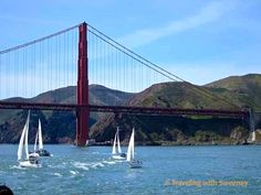 Things to Do in San Francisco - A great resource with posts from 16 bloggers! (Via @Caz and Craig @yTravelBlog )
