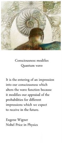 we create our reality from the sea of potentiality