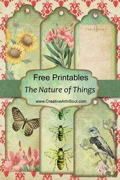 The Nature of Things Printable Junk Journal + Free Printables Printable Scrapbook Paper, Printable Paper, Scrapbook Paper Crafts, Free Printable Cards, Digital Scrapbooking Freebies, Printable Vintage, Printable Crafts, Junk Journal, Journal Cards