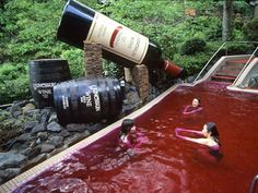 This spa theme park lets its guests take a dip in pools of coffee, wine, or ramen broth