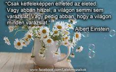 Albert Einstein idézet
