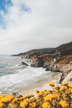 Big Sur, California | Picture by Sam Alive