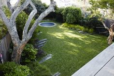 Landscape architect William Dangar replaced a derelict house in Australia with a smaller one to make more room for his family garden with a fish pond, large lawn, and specimen trees in suburban Bondi Beach. Backyard Trampoline, Backyard Trees, Sunken Trampoline, Landscape Design, Garden Design, Patio Design, House Landscape, Derelict House, Specimen Trees