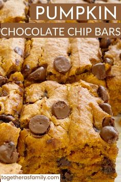 Pumpkin chocolate chips bars made in a 9x13 baking pan. Thick, soft-baked pumpkin bars, full of milk chocolate chips. You have to make these!! The recipe uses an entire can of pumpkin so no leftovers. Pumpkin Cake Recipes, Baked Pumpkin, Pumpkin Bars, Pumpkin Dessert, Pumpkin Spice, Chocolate Chip Bars, Pumpkin Chocolate Chips, Chocolate Chip Recipes, Brownie Recipes