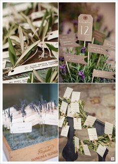 decoration mariage provence escort cards avec lavande laurier olivier