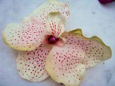 A chacun son style Collection accessoires barrettes pinces broches #mode #cheveux #mariage  http://artifleurs-fleurs-artificielles.com