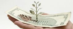 Trees don't grow on money you know!  Building a Green Economy by Yuken Teruya.