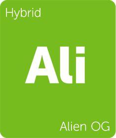 Alien OG Strain Information - Leafly