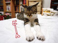 平和的解決方法 うにオフィシャルブログ「うにの秘密基地」Powered by Ameba