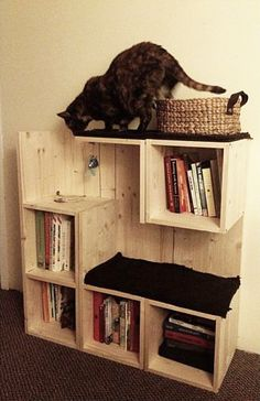 Un intérieur cat-friendly sans ruiner sa déco A cat-friendly interior without ruining its decoration We have found for you plenty of great ideas to save your decor while privileging a cat-friendly interior. Diy Cat Tree, Cat Shelves, Cat Room, Cat Condo, Pet Furniture, Cat Accessories, Space Cat, Diy Stuffed Animals, Cat Life