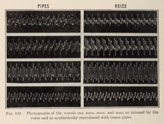 Fig. 181. Photographs of the vowels ma, maw, mow and moo, as intoned by the voice and as synthetically reproduced with organ pipes.The science of musical sounds. 1922.