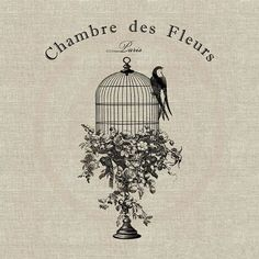 70 trendy ideas for vintage bird cage stand etsy Vintage Birds, Shabby Vintage, Vintage Images, French Vintage, Etsy Vintage, Vintage Style, Bird Cage Stand, Cage Tattoos, Etiquette Vintage