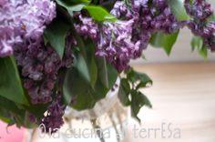lilas—lilac—lilla #seasonalharvest #springharvest #seasonal #fruits #vegetables #spring #harvest #springvegetables #seasonalvegetables