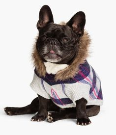 H&M US - Dog Sweater - Now US$12.95 Was US$24.95 - Fine-knit, plaid dog sweater with wool content. Faux-fur-lined hood and ribbed cuffs. Length 22 1/2 in. (14 1/2 in. excluding hood). DETAILS 6% wool, 48% acrylic, 21% nylon, 25% rayon. Machine wash cold Imported
