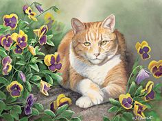Lang - May   2015 Wallpaper | Cats In The Country