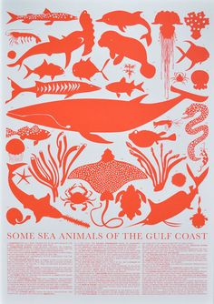 a visual celebration of gulf coast sea creatures... its about time they got a little love!  from banquet stationary