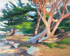 Evening Glow on Carmel Trees Beautiful Places, Glow, Trees, Paintings, Artist, Instagram, Tree Structure, Painting Art, Painting