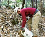Yosemite Volunteer Vacation...Active Volunteer Vacations - Volunteer Travel with REI Adventures