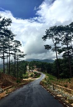 New Summer Nature Photography Trees Beautiful Ideas Summer Nature Photography, Mountain Photography, World Photography, Travel Photography, Dalat Vietnam, Beautiful Vietnam, Beautiful Landscapes, Trees Beautiful, Beautiful Places