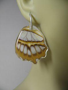 Aretes con Alas de Mariposa Verdaderas por BioArteNatureJewelry, $22,00