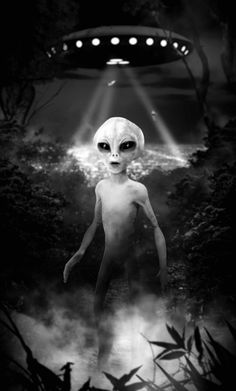 The perfect Alien Ufo Strobe Animated GIF for your conversation. Discover and Share the best GIFs on Tenor. Aliens And Ufos, Ancient Aliens, Ancient History, European History, American History, Art Alien, Alien Pics, Trippy Alien, Illusion Kunst