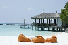 Constance Moofushi (Maldivas/Southern Ari Atoll) - Complejo turístico Opiniones - TripAdvisor