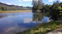 Rio Landro. Viveiro