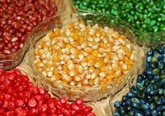 How to dye corn kernels: 1. Partially fill a cup, container, or plastic baggy with water. 2. Add a touch of vinegar to the water (a teaspo...