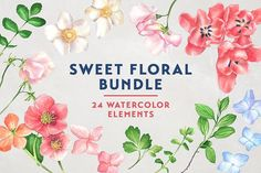 Sweet Floral Watercolor Bundle by Manuka  on @creativemarket