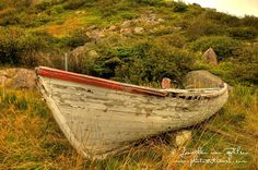 Newfoundland's Avalon Peninsula is a photographer's paradise. Every turn becomes a postcard view, but the ruggedness of the country and seaside lend an almost eerie look to each photograph taken.