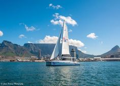 Boat Journeys in Cape City with Waterfront Charters. Waterfront Charters, the oldest tenant in Cape Activities In Cape Town, Cape Town Accommodation, V&a Waterfront, Adventure Holiday, Charter Boat, Picture Postcards, Adventure Activities, Beautiful Beaches, South Africa