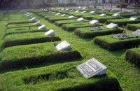DKPP Inhil akan Bangun Areal Pemakaman Baru