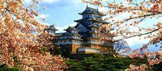 Comecei a preparação para minha viagem em outubro pelo Japão com o historiador Leandro Karnal e a agência Latitudes Viagens de Conhecimento organizando todo o roteiro, que com certeza será inesquecível!