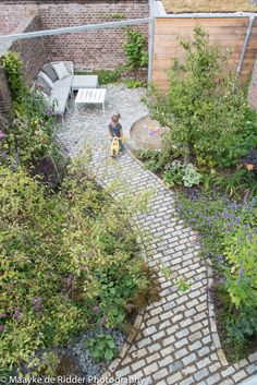 Affordable And Effective Cottage Garden Designing Methods For Your Home Your home is your world, and much like the world around us, looks are important.
