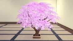 Sakura Bonsai http://cc-colorful.net/DL/05.html