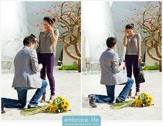 Disney Concert Hall Marriage Proposal Photography - Walt Disney Concert Hall