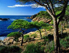 Resultado de imagen de paisaje de interior y paisaje de costa