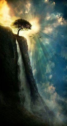 Glorious wonder