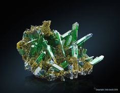 Vivianite. Huanuni Mine, Bolivie Taille=12cm Collection X.Y. / Photo Tóth László