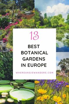 Discover the most beautiful botanical gardens in Europe