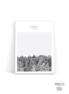Forest print Landcape Print Photography by PrintsMiuusStudio