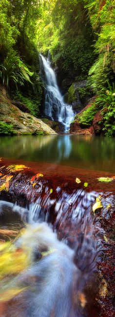Elabana Falls, Queensland, Australia