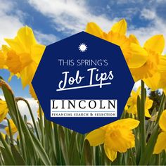 We are Lincoln, a leading recruitment company in Ireland and the UK. We specialise in recruiting for healthcare, technology, financial sectors and more. Contact us today to start your search or career.