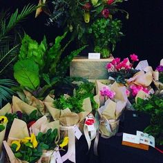 Last minute Mother's Day flowers available from the Tasting Australia Pavilion in Town Square - loving these! 💐💗