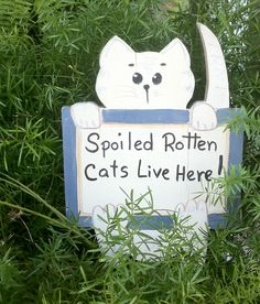 Cat Sign  Found while I was farming my neighborhood