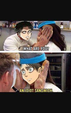 I think I'm the idiot sandwich