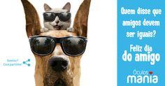 Dia do Amigo: Rede óculos mania