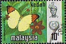 Malay State of Kedah 1971 Butterflies Fine Used SG 128 Scott 117 Other Asian and British Commonwealth Stamps HERE!