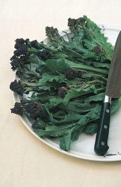 broccoli 'Purple Sprouting'  broccoli - late purple broccoli